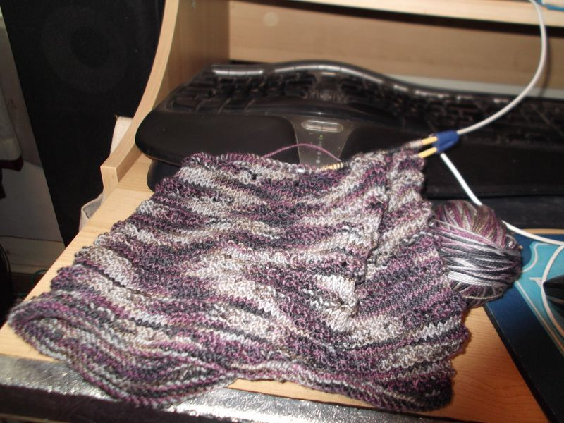 Wine, knitting 003